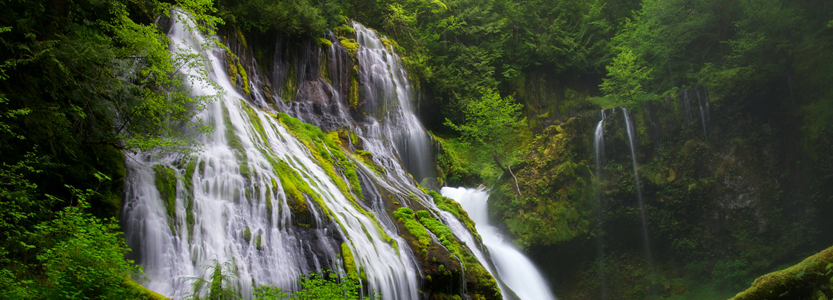 Gorgeous Hikes: Panther Creek Falls