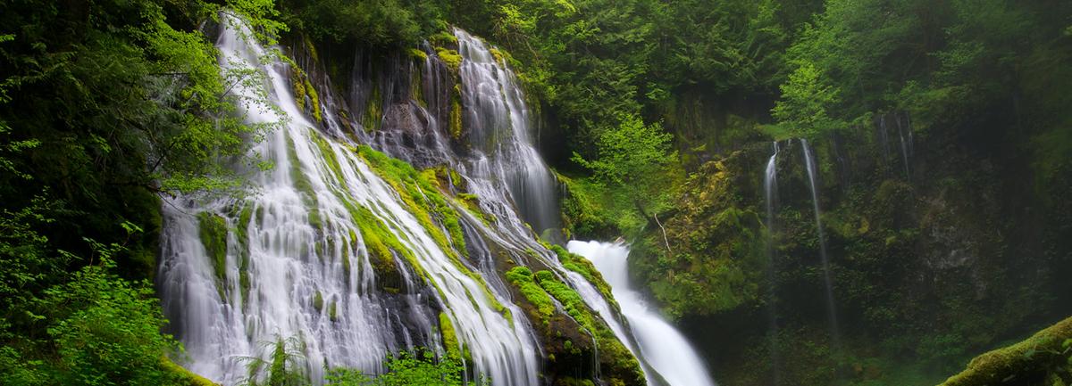 Gorgeous Hikes: Panther Creek Falls