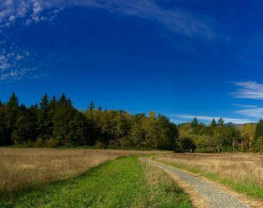 Sams Walker Nature Trail