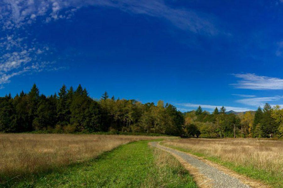 Sams Walker Loop Trail